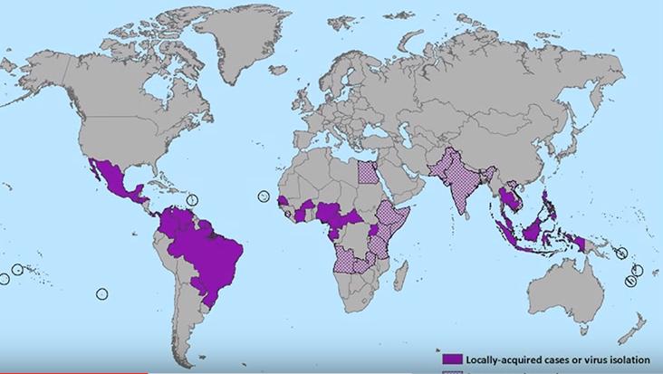 Zika sjukdom